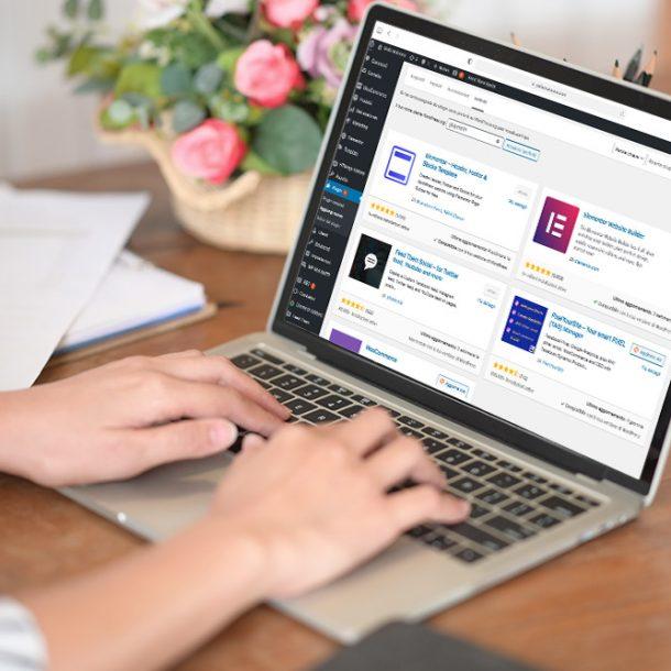 Plugin in Wordpress